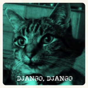 DjangoLPCover300